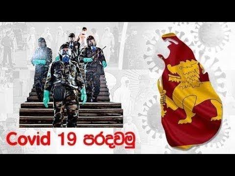 Covid Paradawamu  2020 - 11 - 24