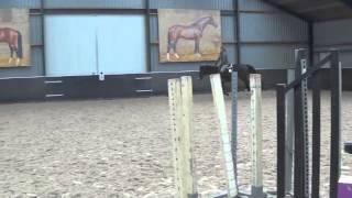 2009 Clinton Stallion *sold*