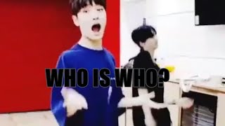 how to tell stray kids apart