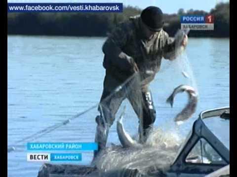 летняя рыбалка на реке таз