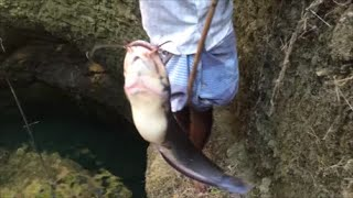 Catching a Big Cat Fish in a Well and Cooking Fresh Fish Fry - Caught and Cooked in an Hour