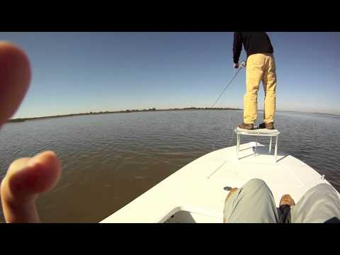 Fly fishing for Redfish near Savannah, Ga