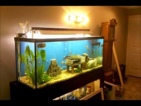 How To Build A Fish Aquarium Canopy