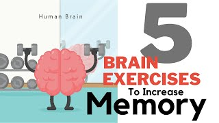 5 Brain Exercises to increase memory ║daily brain exercises║