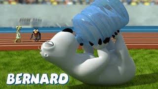 Bernard Bear   Marathon 2 AND MORE   30 min Compilation   Cartoons for Children