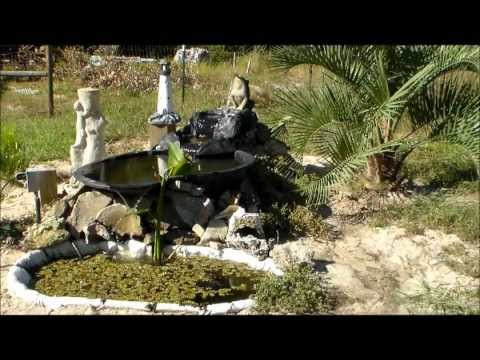 Home Made Pond With Frog Waterfall Pond Made From A Water Trough Youtube
