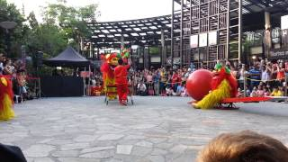 Northern China lion dance