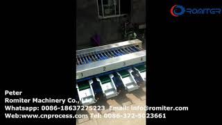 Automatic Fruit Waxing and Size Sorting Grading Machine for Sale