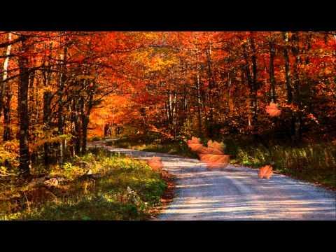 Secret Garden - Greewaves (для скрипки)