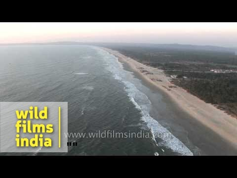 Aerial view of the Arabian Sea and the coast of Goa
