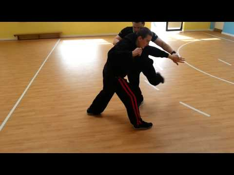 Pencak Silat - Block and Takedown Image 1
