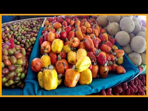 THE SAN ISIDRO FARMERS MARKET IN COSTA RICA: MOUNTAINS OF FRUITS AND VEGETABLES