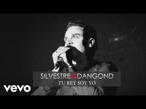 Silvestre Dangond - Tu Rey Soy Yo (Cover Audio)