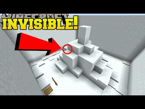 Minecraft: INVISIBLE ENTRANCE!!! - Find The Button Dimensions - Custom Map