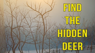 6 Find The Hidden Deer Puzzles