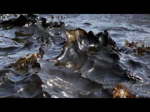 Massive BP Oil Spill in Gulf of Mexico images & Timeline .wmv