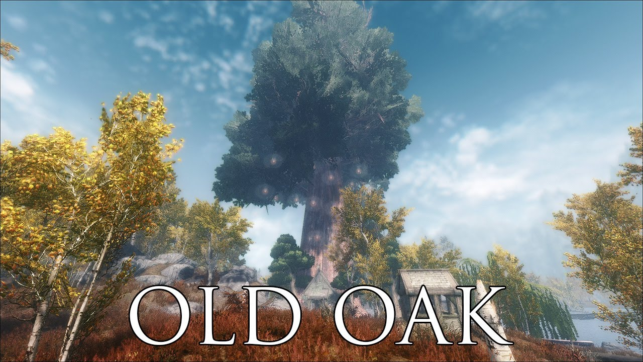 TES V - Skyrim Mods: Old Oak - Magic house inside a tree ...