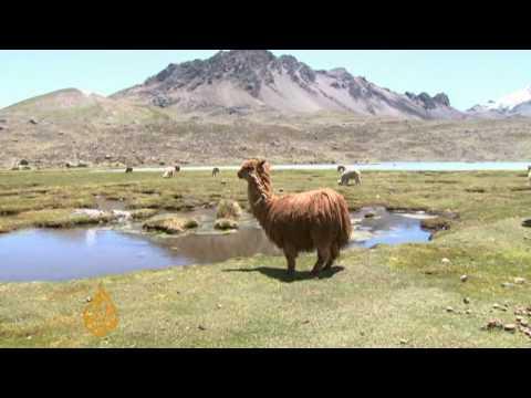 Peru's tropical glaciers under threat - 17 Dec 09