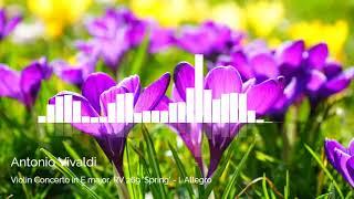 Antonio Vivaldi - Violin Concerto in E major, RV 269 'Spring'   I  Allegro