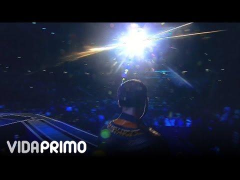 Don Omar - Mi Nena