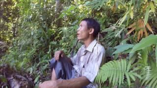 Arriving   Real-Life Tarzan (1/11)
