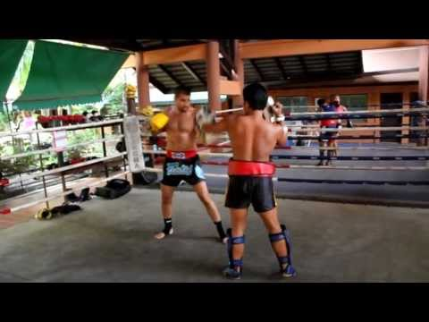 Pad training - Muay Thai @ Fairtex Banglpee Image 1
