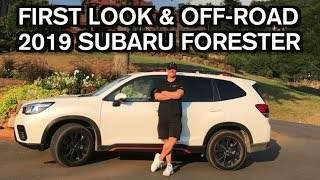 First Look and Off-Road Drive: 2019 Subaru Forester on Everyman Driver