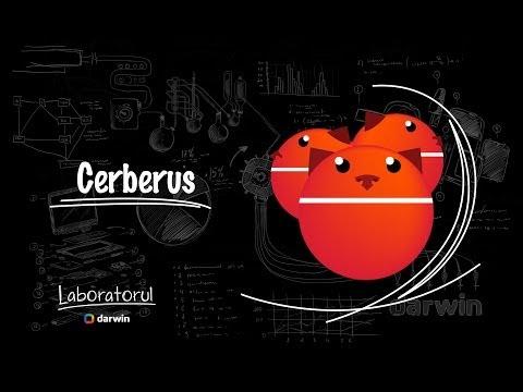 2. Cum să-ți găsești telefonul furat? - Cerberus review