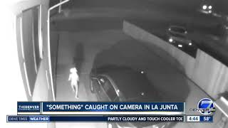 """Alien"" caught on camera in La Junta"