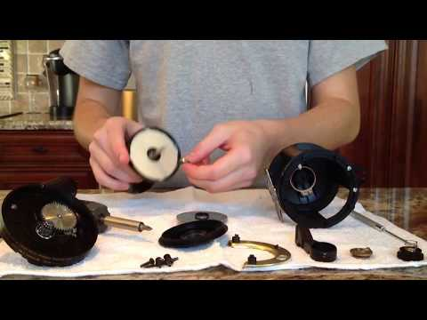 How to check a spool bearing on a TLD 25. 20. 15