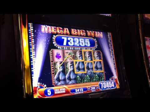 2nd Mega Big Win Queen of the Wild Casino Slot Machine Bonus Round Win
