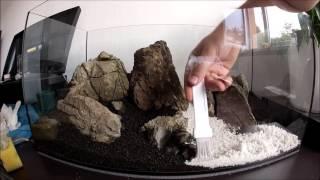 Aquascaping Planted Shrimp aquarium timelapse 56l