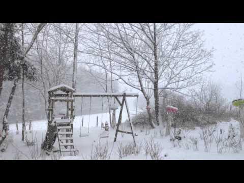 Sneeuwval op 24 januari 2015