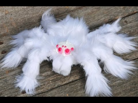 Top 5 Most AMAZING Spiders In The World