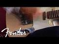 Jim Campilongo Fender Princeton Reverb Amplifier | Fender