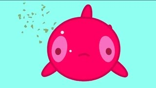 MOLANG and the GOLDEN FISH - MOLANG COMPILATION - Cartoon for Kids