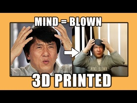 success kid on grumpy cat 3d print meme 3d print model MEMEs