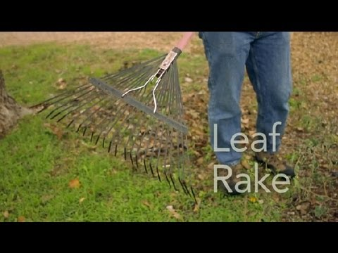 How to Use a Leaf Rake : Garden Tool Guides