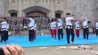 World Premier Taekwondo Team performing at West Point