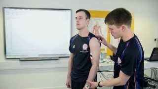 Electromyography (EMG) in Sport and Exercise Science