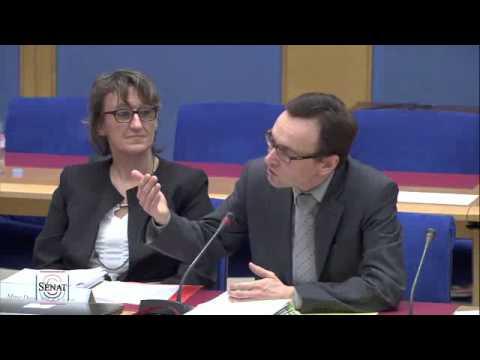 Audition de M. Xavier BONNET, chef du service de l'économie, de l'évaluation et de l'intégration du