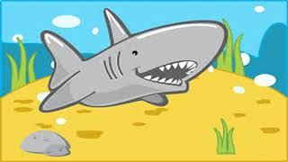 Sharky Baby Songs | Baby Songs | Toddler Songs | Family Friendly | Sing Along