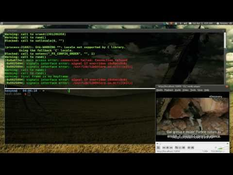 Sopcast CLI With VLC - Ubuntu 10.10