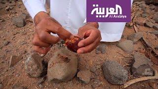 على خطى العرب: وصفات عيد اليحيى لعلاج الأمراض