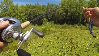 How to fish a jig for bass by 1rod1reelfishing for Lunkerstv fishing rods