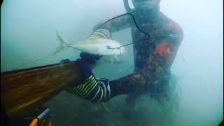 Подводная охота 2019