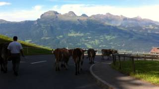 Terrible traffic on the way to Malbun, Liechtenstein