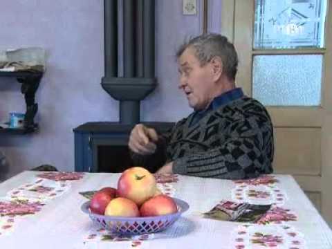 Andrija koji je zdravo voleo slatkiše - 5казање