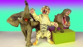 Learn Wild Animals - Lion Tiger Elephant - Kids Zoo Toys - Fun & Educational