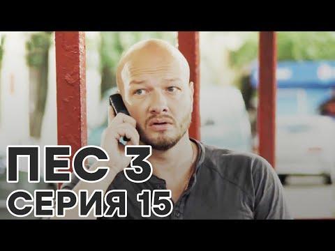 Сериал ПЕС - все серии - 3 сезон - 15 серия - смотреть онлайн